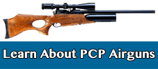 learn-about-pcp-airguns